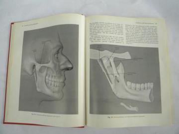 vintage medical and dental textbook diseases of the jaw w/illustrations