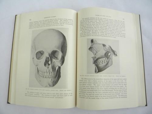 Vintage Medical Dentistry Book Oral Anatomy With 300 border=