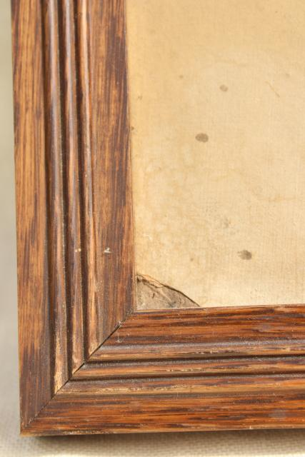 vintage oil paintings, botanical art flowers, painted floral sketches in old oak plank back frames