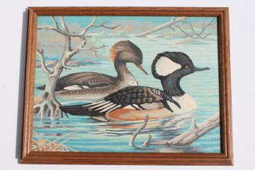 vintage paint by number picture, loons or wild game bird ducks framed PBN
