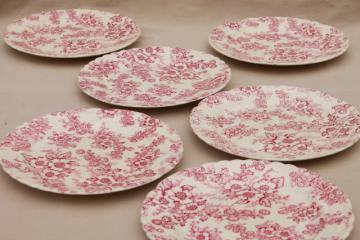 vintage raspberry red chintz floral Taylor Smith Taylor china plates, toile style print