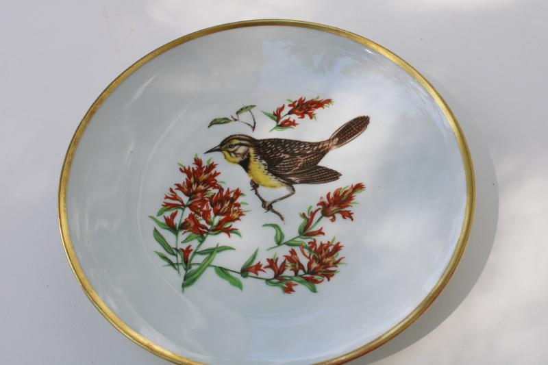 vintage song birds bird & flower pattern salad plates E&R Schumann Bavaria