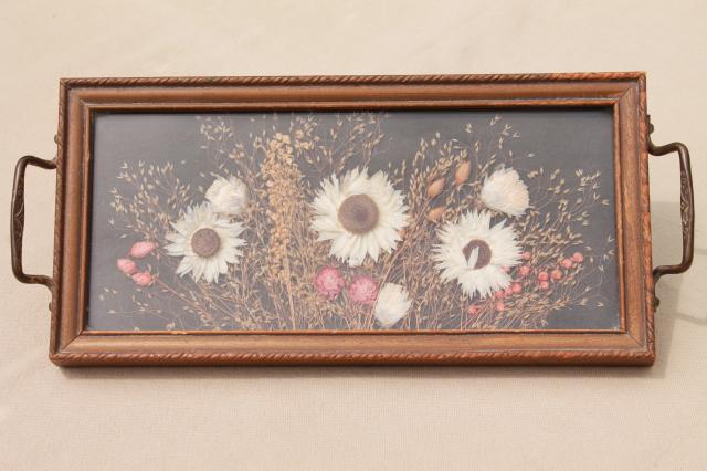 vintage wood framed plant specimen mounts under glass, dried pressed flowers tray