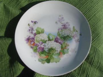 violets and snowball flowers, old antique china plate marked Germany